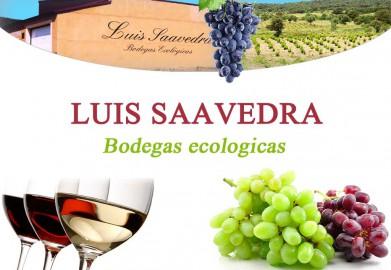 Luis_saavedra_logo-391x270